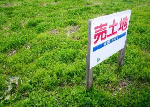 売土地 (1)
